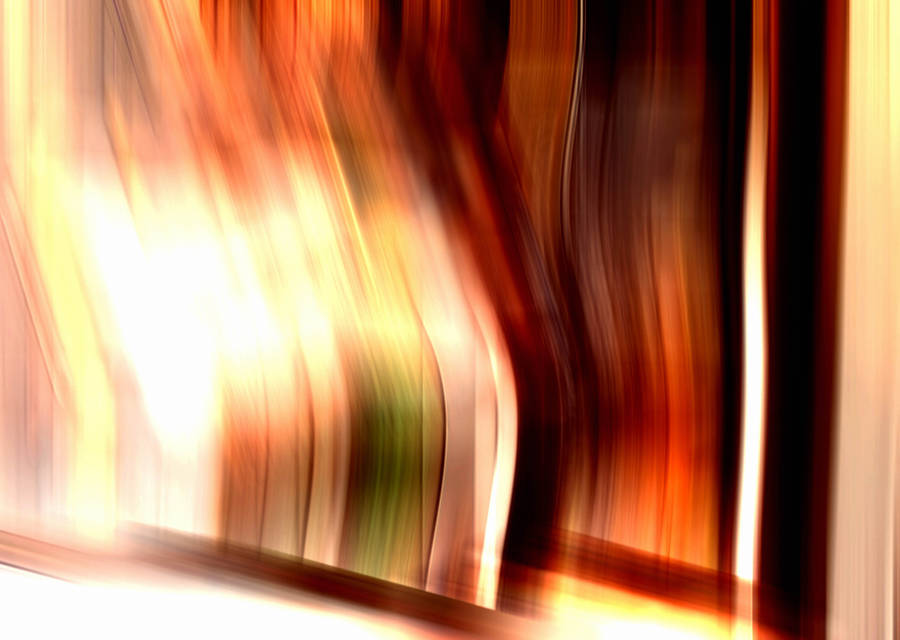 Fast And Furious Vin Diesel Paul Walker Michelle Rodriguez