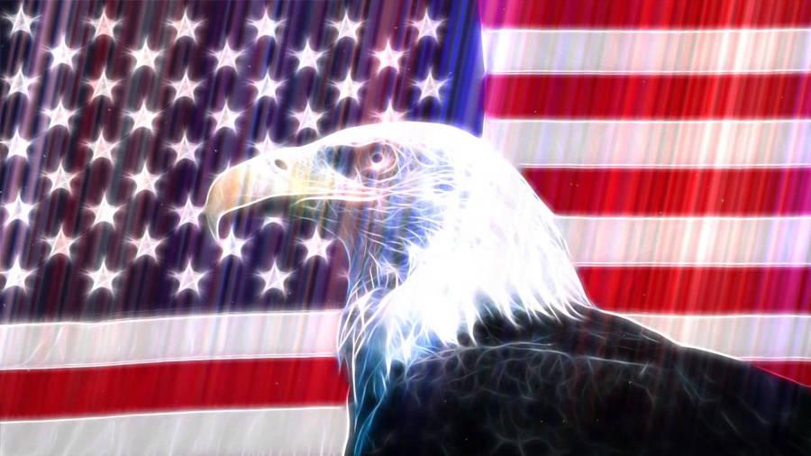 American Bald Eagles Wallpaper 1920x1080