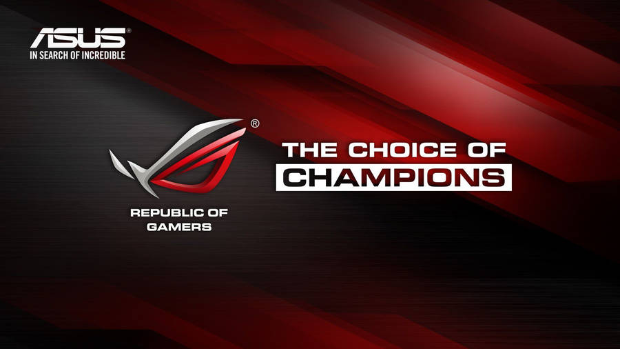 asus   republic of gamers wallpaper   computer wallpapers