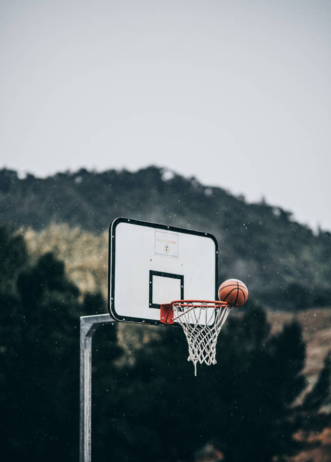 7 Basketball Wallpapers Hd HD7 600x338