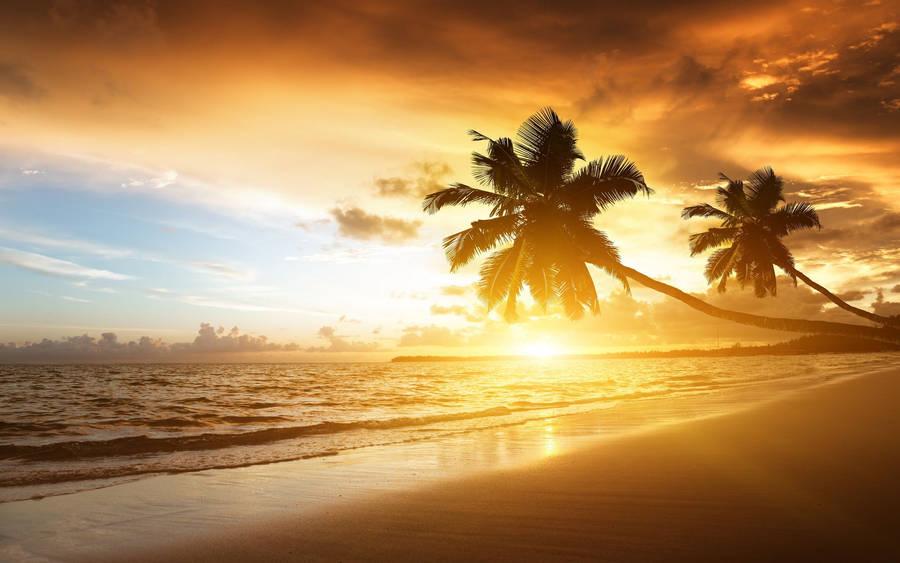 Beautiful Sunset over Fiji Island Wallpaper