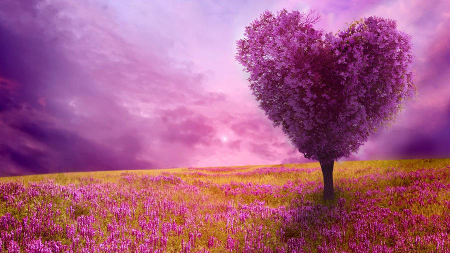 Most Beautiful Hd Wallpapers Page 2 4kwallpaperorg