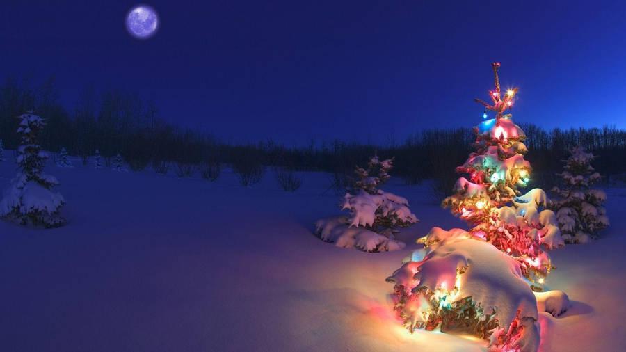 Nice christmas ornaments -  X 1080