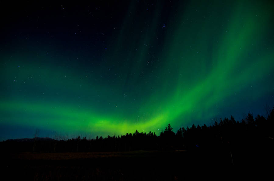Romantic Couple Silhouette and the Northern Lights Wallpaper