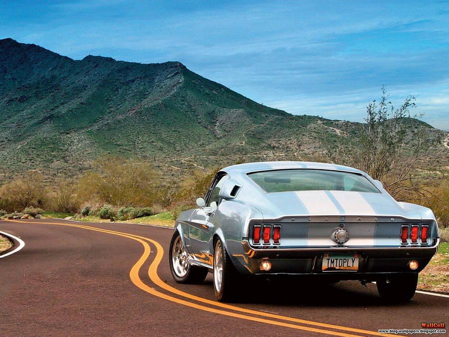2010 Ford Mustang Rtr C Drift Wallpaper Car Wallpapers 28131