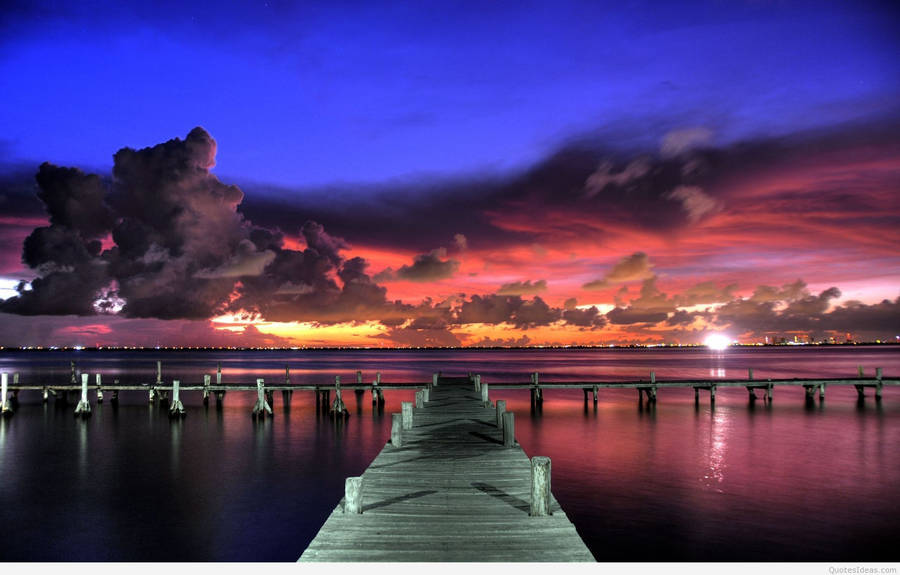 palm tree beach sunset wallpaper - photo #13