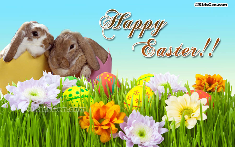 Cute Easter Bunny in the Grass Wallpaper
