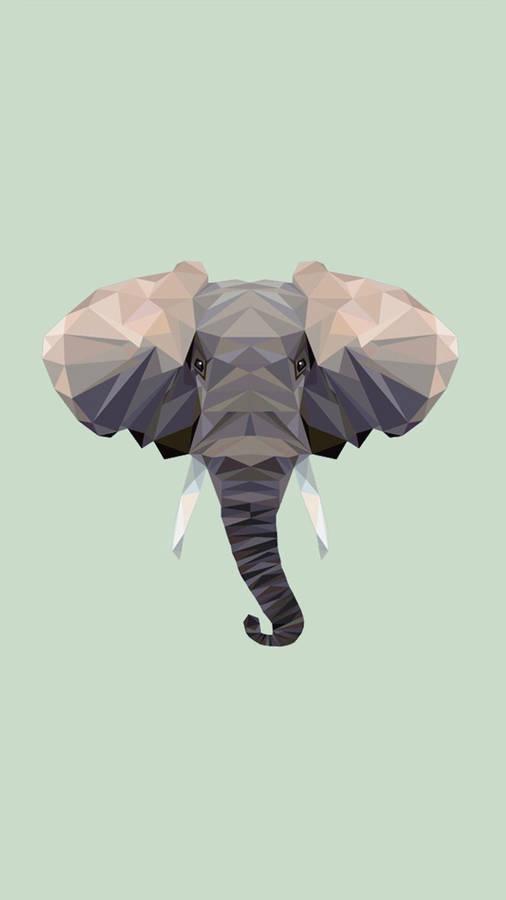 When was modoc the elephant born — photo 2