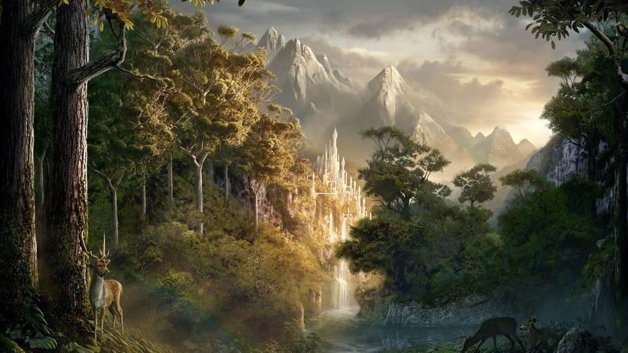 Dragon Wallpaper 1920x1200 Fantasy Forest
