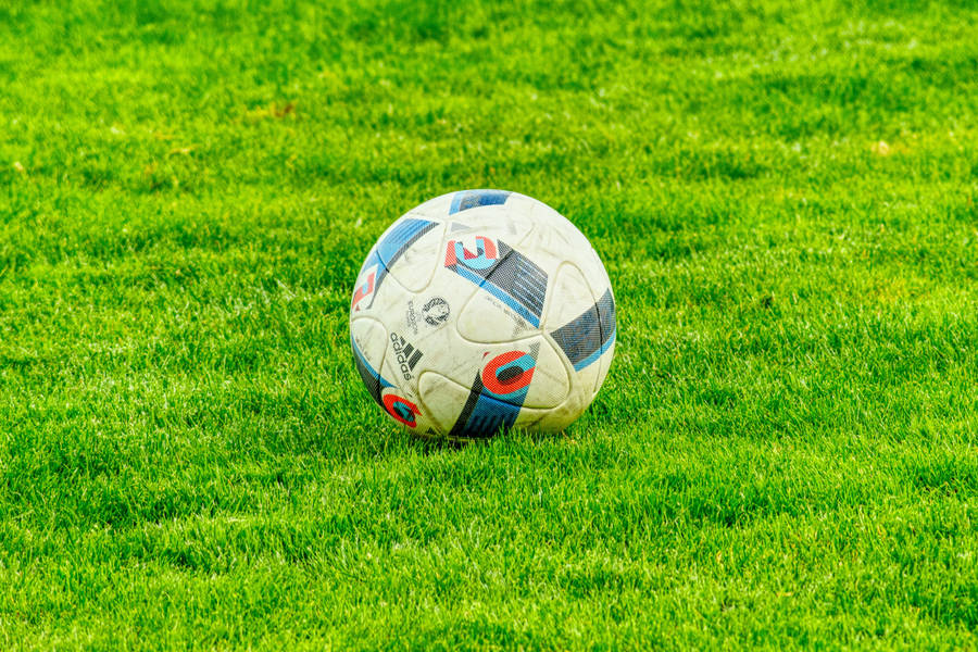 Football In The Grass Wallpaper Sport Wallpapers 26351