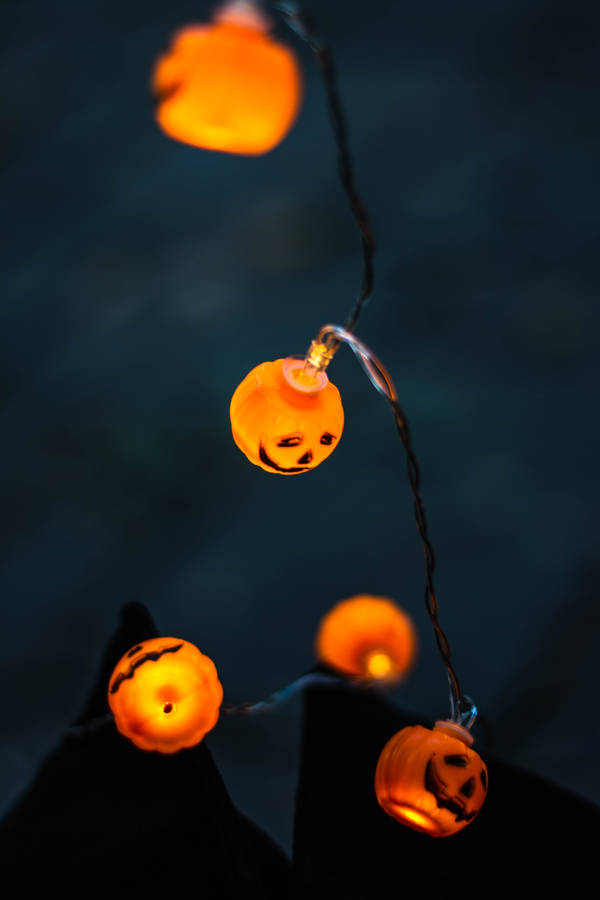Carved Halloween Pumpkins and Fall Leaves on White Background Wallpaper