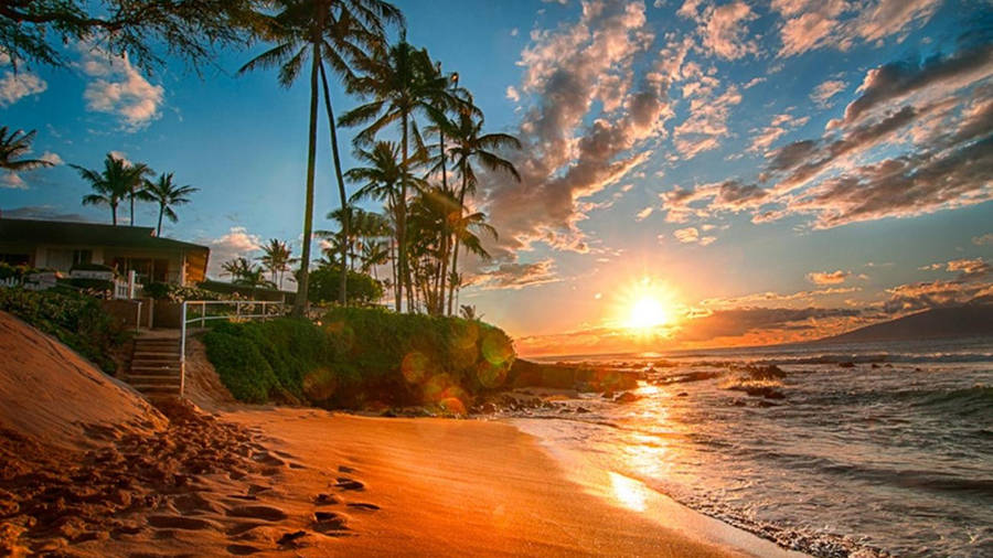 Hawaii Beach View by Mary Maxam