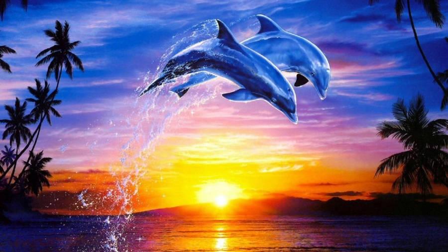 Moonlight dolphins wallpaper in 1024x768 screen resolution