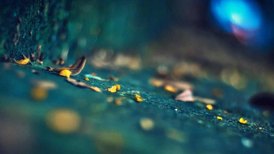 http://ipicture.net.ua/pictures/8a38d161037d6a3e1e5a4edbb9426dd4.jpg