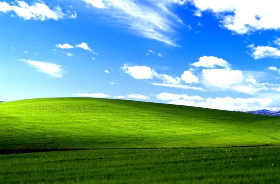 Download Windows 95 Wallpaper Wallpaper | Wallpapers.com