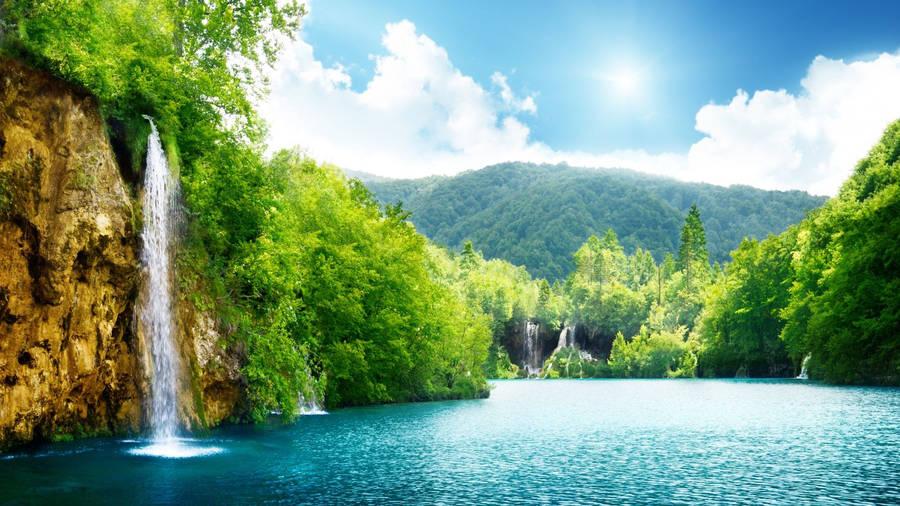 Beautiful Summer Nature Wallpaper