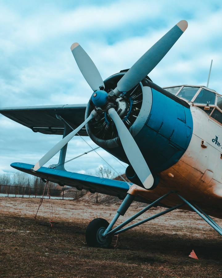 P 51 (航空機)の画像 p1_31