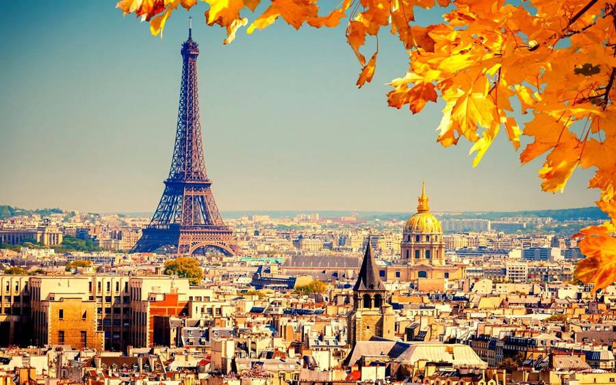 Autumn in France - Wallpaper #41886
