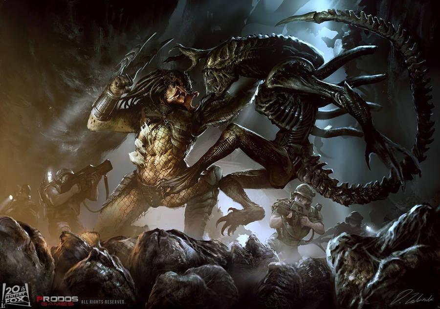 alien vs predator wallpaper - movie wallpapers - #14450