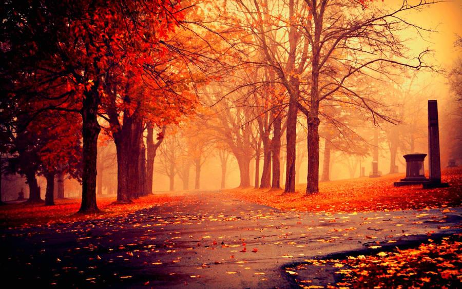 Autumn in Siberia - Wallpaper #8930