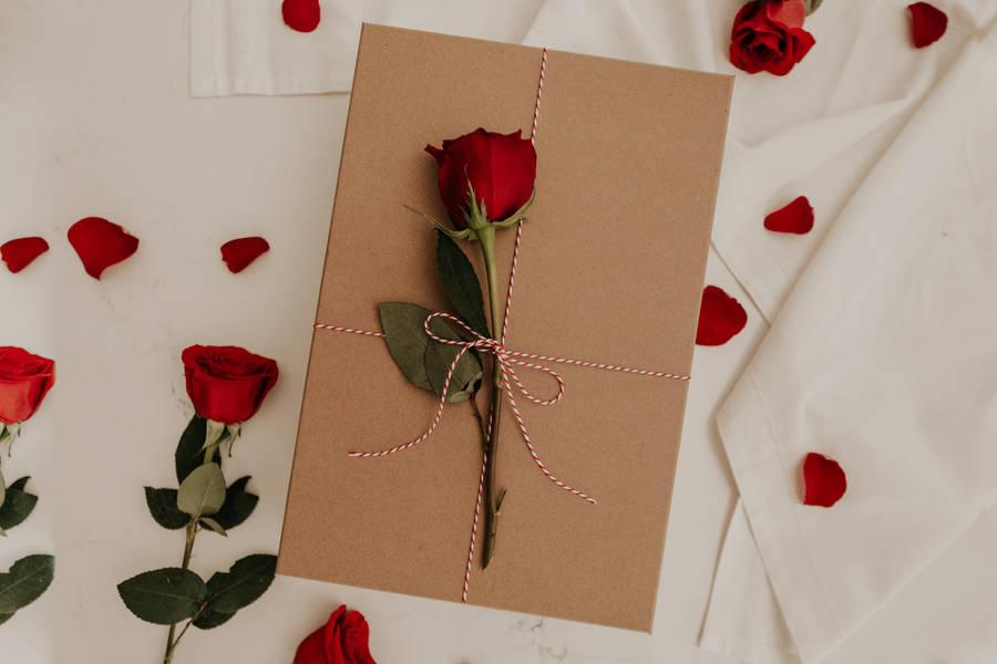 rosas vermelhas papel de parede hd