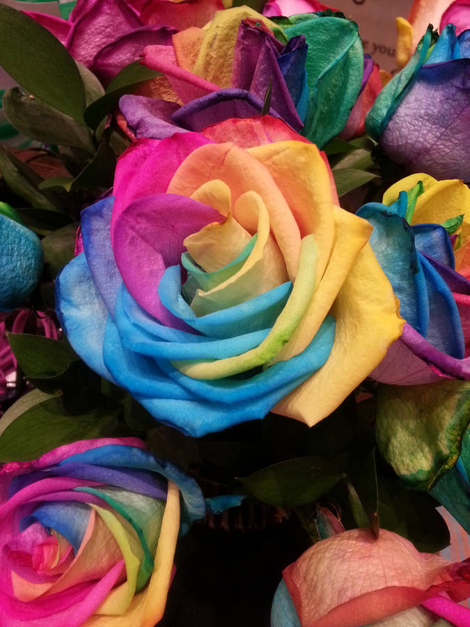 Bouquet of roses wallpaper - Flower wallpapers - #12330