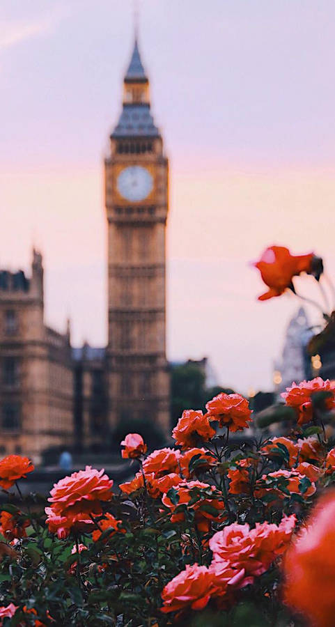 Approaching London Widescreen Wallpaper