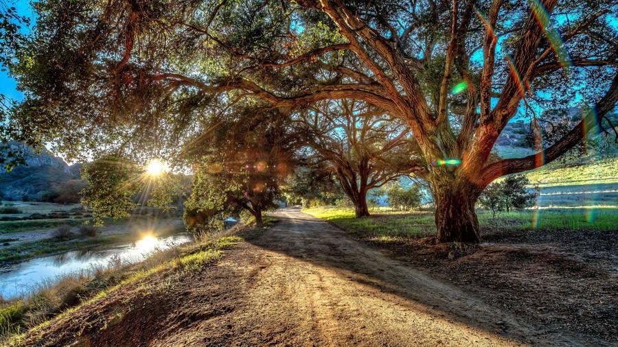 Candace Cameron Premiere Click L.A. Foto 6 (Кендес Камерон Буре Премьера Нажмите L.A. Фото 6)