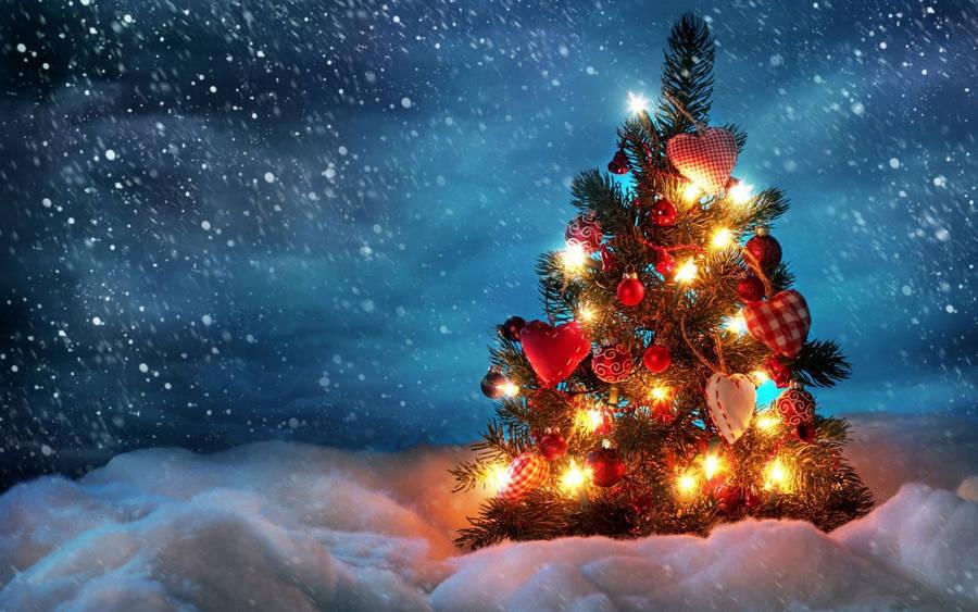 Minimalist Christmas Tree Wallpaper 1920x1200