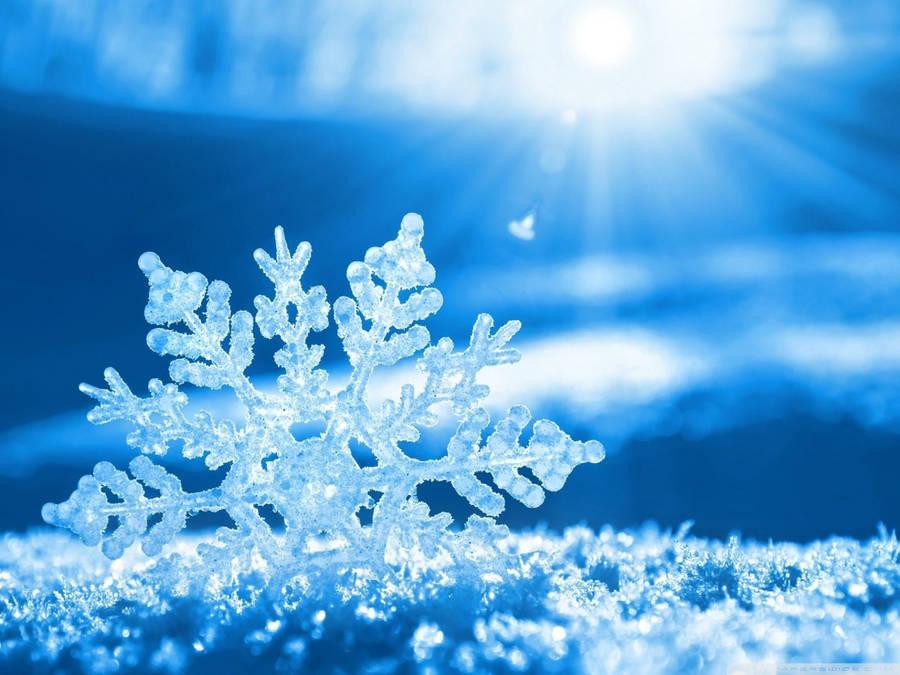 sparkling snow desktop wallpaper - photo #23