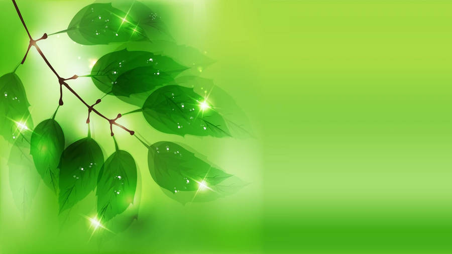 Electric green wallpaper in 1024x768 screen resolution