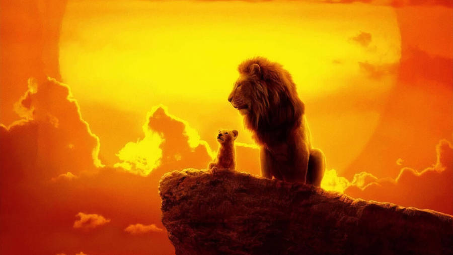 the lion king 2019 4k hd movies 4k wallpaper image