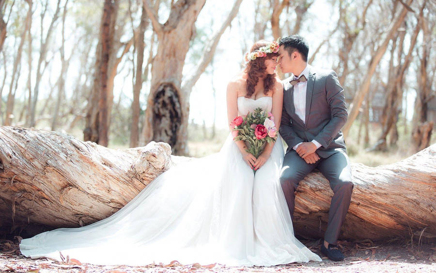 Rainbow Couture Lupini at High Society Bridal