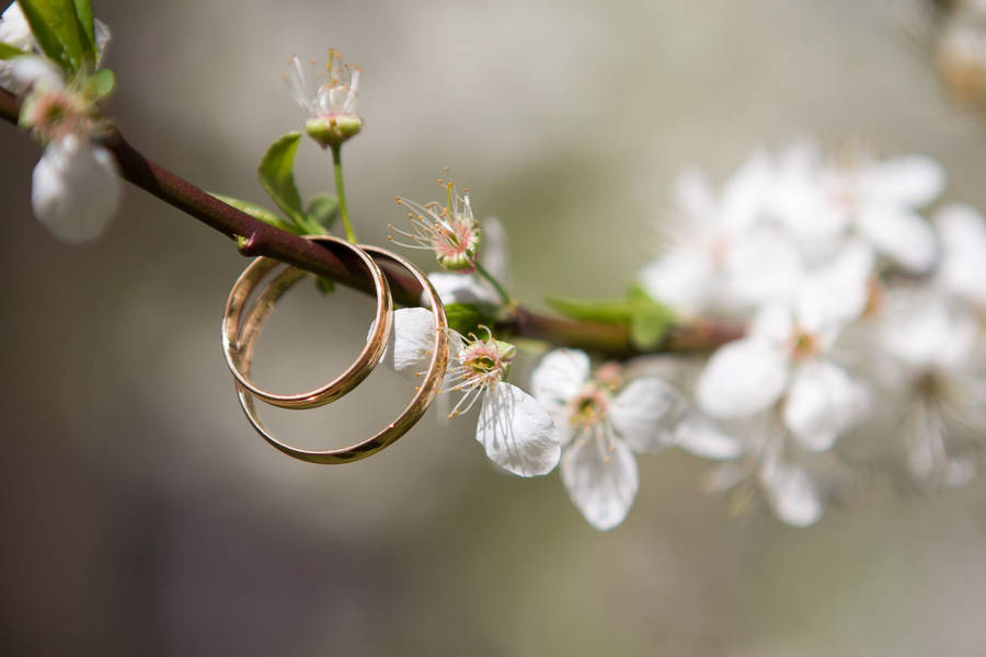Spring succulent bridal bouquet