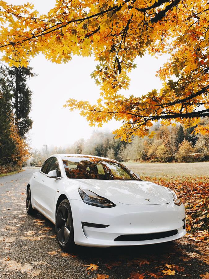 Tesla Model 3 Wallpapers Page 2 4kwallpaperorg