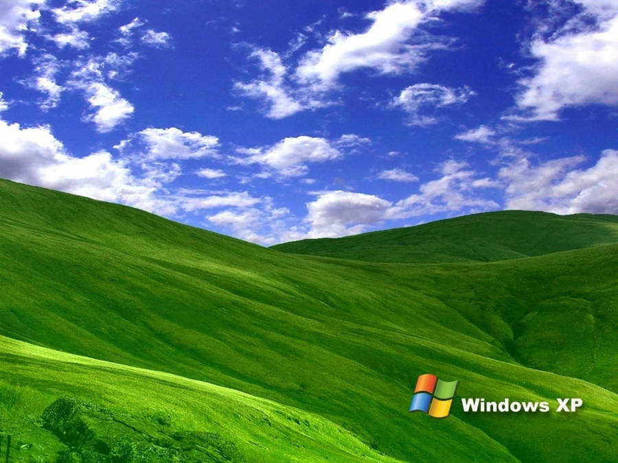 Windows Bliss Funny Wallpaper WallDevil