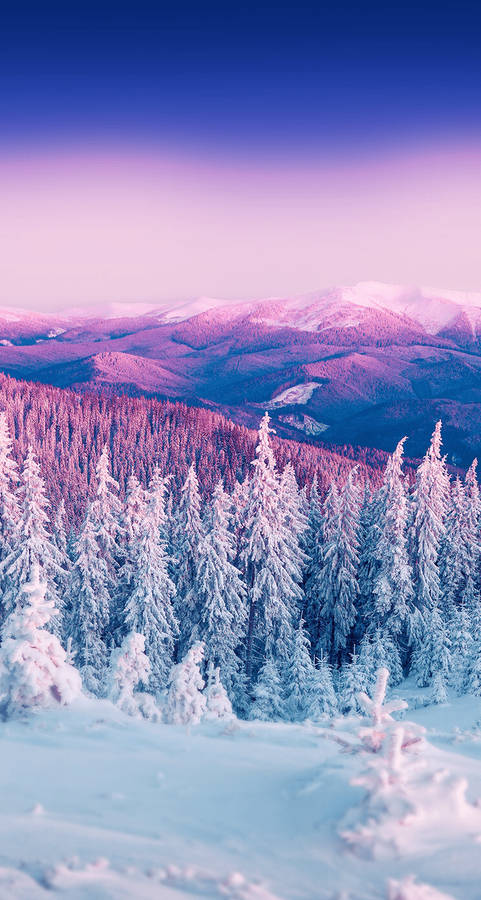 Rustic winter view widescreen wallpaper wide wallpapers net for Natale immagini per desktop