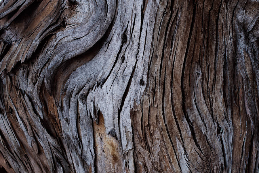 Wood Pattern Wallpaper Abstract Wallpapers 3604