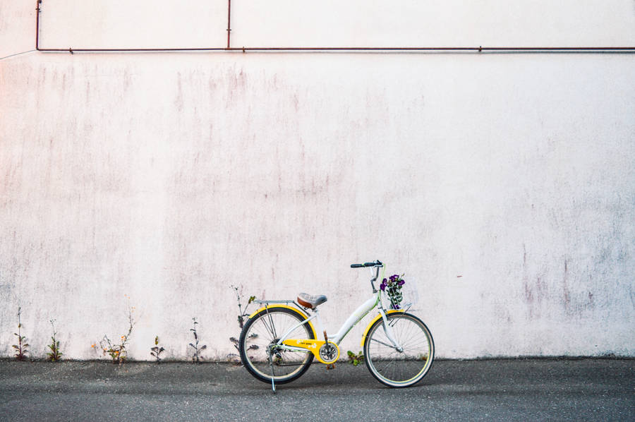 Prima bici in legno